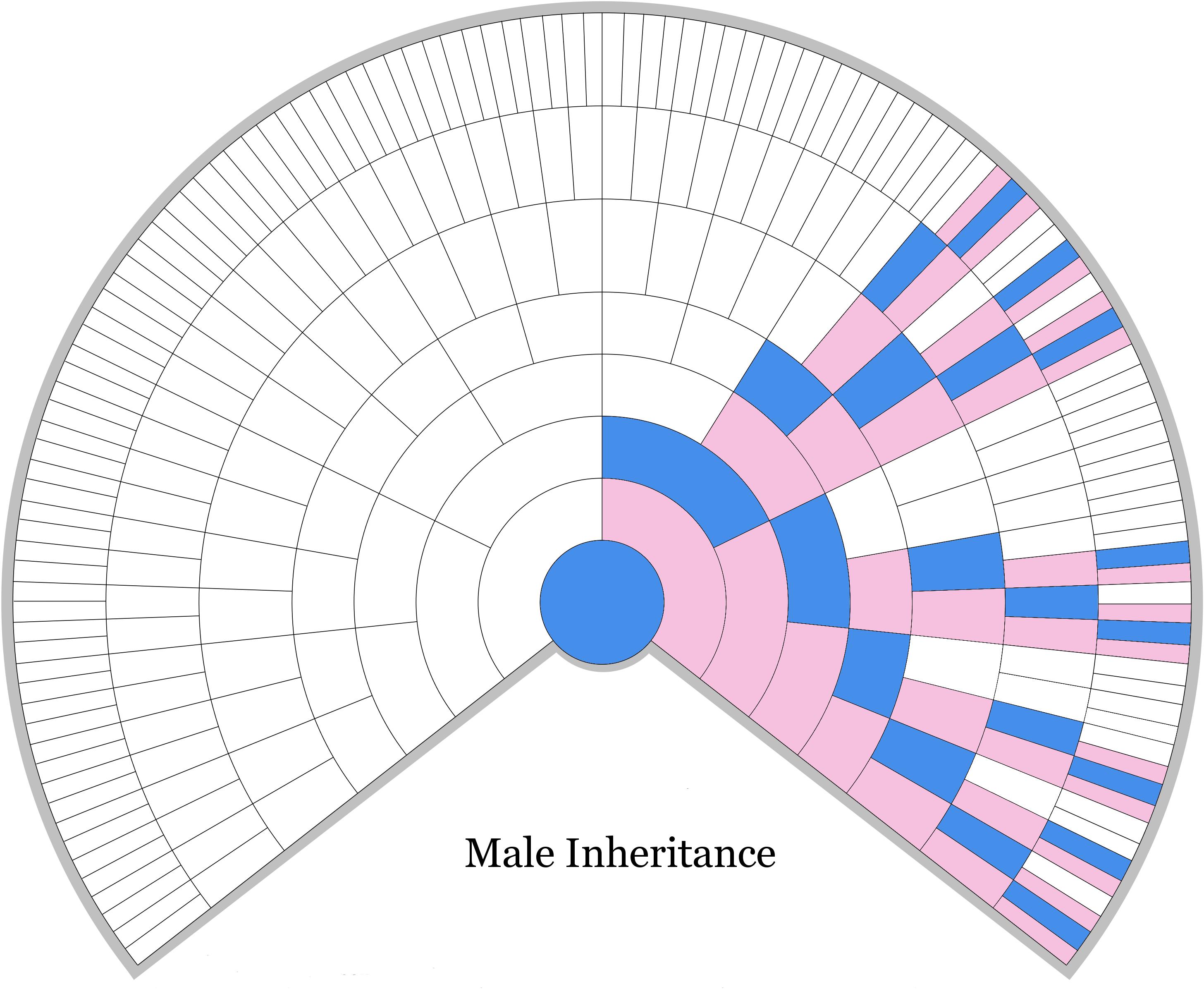 Male X Dna Inheritance Chart