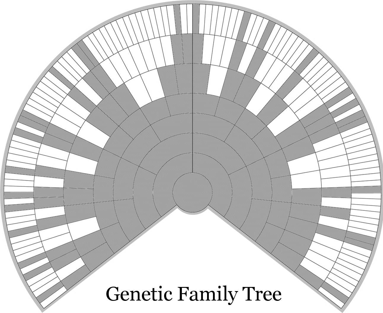 Q Amp A Everyone Has Two Family Trees A Genealogical Tree