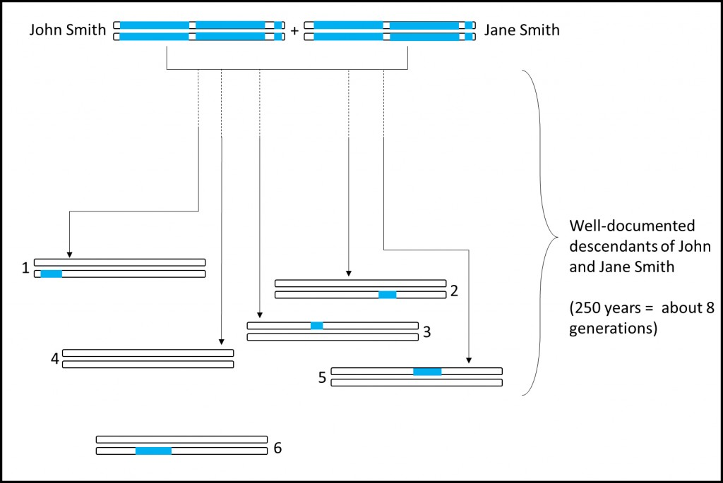 Segments of DNA from a couple in the mid-1700s are found in living descendants.  Some descendants (#4) will have none of their DNA.  Other relatives (#6) may have no documentation that they are related to the couple.